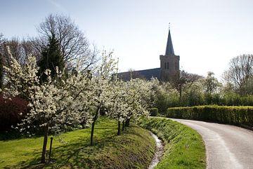 De kerk van Wemeldinge van Desiree Meulemans