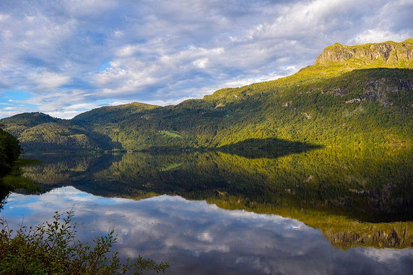 Reflectie Noorse Fjorden van Dick Hooijschuur