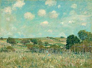 Meadow, Alfred Sisley