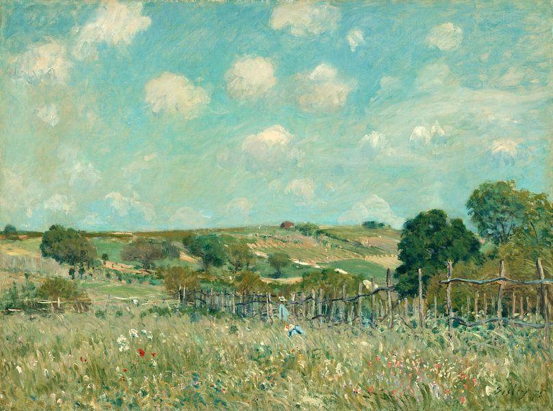 Meadow, Alfred Sisley van Liszt Collection