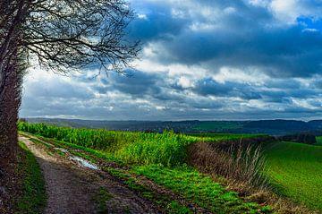 Landschaft Süd-Limburg von george vogelaar