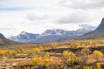 Herbst in Rondane von Barbara Brolsma