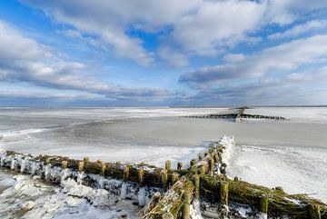 Rijsdammen in het ijs van Marnefoto .nl