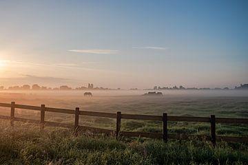Nederlands landschap zonsondergang zonsopgang weiland en paarden van Déwy de Wit