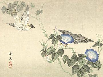 Zwei Vögel, die auf blaue Winde fliegen von Matsumura Keibun - 1892
