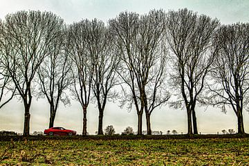 Mercedes-Benz CLS53 AMG sur Merlijn Viersma
