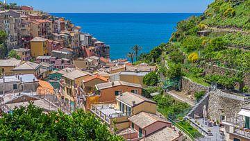 Manarola, eines der Dörfer der Cinque Terre (Italien) von Jessica Lokker