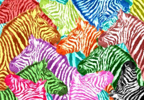 Zebra Love Pop Art PUR