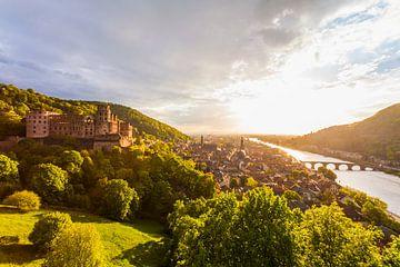 Kasteel in Heidelberg van Werner Dieterich