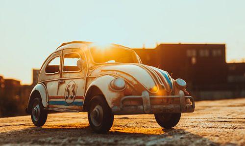 ein goldener Morgen mit Herbie von Leo leclerc