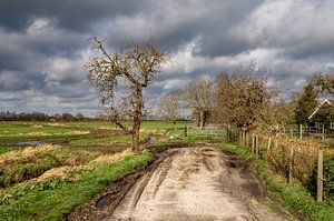 Onstuimig voorjaar 2020. Hollands landschap bij Maartensdijk. van Marc Wielaert