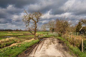 Niederländische Landschaft bei Maartensdijk von Marc Wielaert