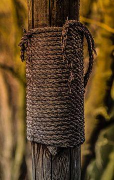 Old Makiwara van Tinus Tibbe