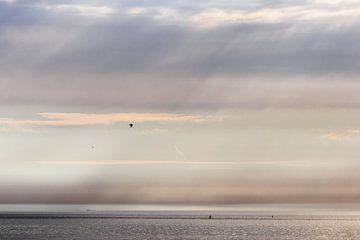 Zonnestralen en meeuw op zee van Anne Zwagers