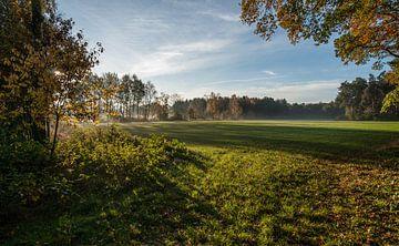 Lage oktoberzon over de weilanden van Douwe Bergsma