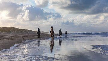 Paarden en Strand Vlieland. van Gerard Koster Joenje (Vlieland, Amsterdam & Lelystad in beeld)