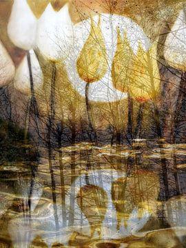 Tulpenwasser von Christine Nöhmeier
