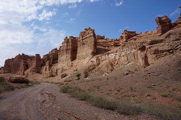 Schöne Schlucht in Kasachstan von Lindy van Oirschot