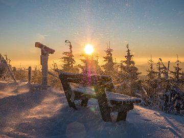 winterlicher Schneesturm auf dem Fichtelberg von Animaflora PicsStock