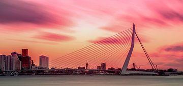 Kleurrijke skyline van Rotterdam van