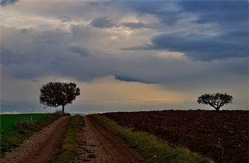 Les 2 arbres von Georges Rudolph