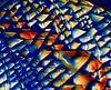 chinolinol van Frans Beer thumbnail