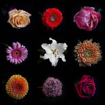 Collage bloemen van Christianne Keijzer