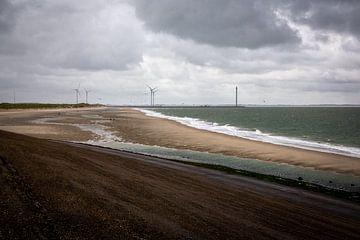 De grauwe Nederlandse kust nabij Neeltje Jans van Rik Pijnenburg