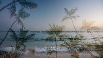 Dubbele belichting van een strand en palmbomen in de Domicaanse Republiek van Fred en Roos van Maurik