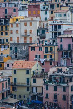 Gekleurde huisjes in Cinque Terre van Felix Van Lantschoot