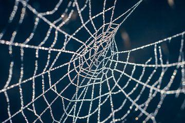 Een web van diamanten  van AnyTiff (Tiffany Peters)