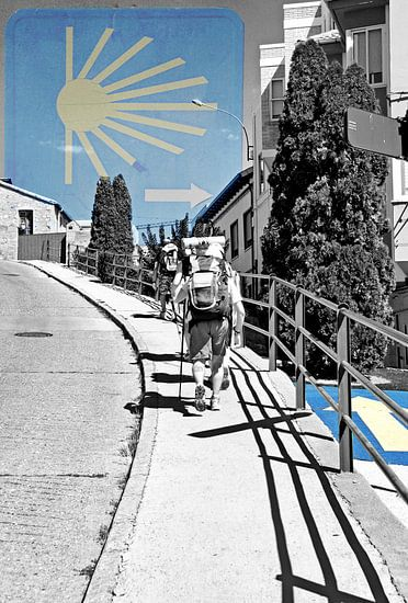De weg naar Santiago van Sigrid Klop