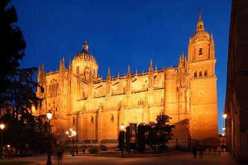 Alte und Neue Kathedrale bei Abenddämmerung, Salamanca, Kastilien-León, Spanien