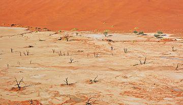At Dead Vlei Namibia van