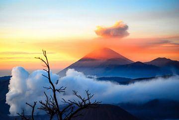 Zonsopgang met mist bij Mount Bromo op Java van Dieter Walther