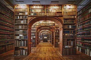 Ober Lausitzian Bibliothek der Wissenschaften, Patrick Aurednik von 1x