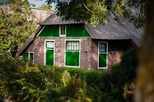 Rietgedekte Nederlandse boerderij met groene kleuren