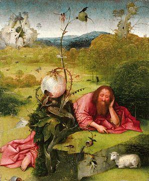 Hieronymus Bosch - Johannes der Täufer in der Wüste