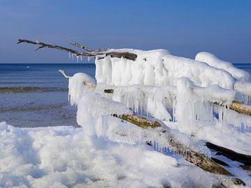 Frozen van Jörg Hausmann