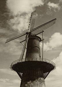 Korenmolen De Noord Rotterdam