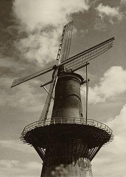 Korenmolen De Noord Rotterdam sur Rob van der Teen