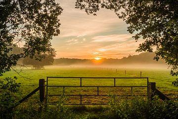 Morgenlicht über einer Wiese von Michel Knikker
