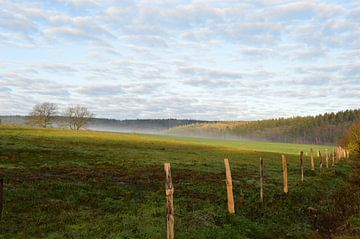 Wunderbare Eifel am Morgen von Susanne Seidel