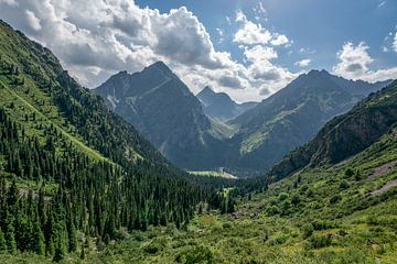 Zicht van het het Tian Shan gebergte in Kirgizië van Mickéle Godderis
