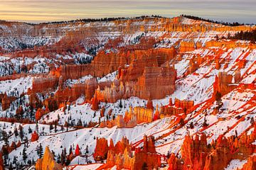 Lever de soleil hivernal à Bryce Canyon N.P., Utah sur Henk Meijer Photography