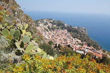 Kakteen an einem Berghang, Stadtansicht, Altstadt mit Teatro Antico Greco, Taormina, Provinz Messina von Torsten Krüger