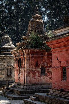Tempels sur Joost van Riel