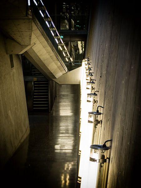 Follow the lights van Lex Schulte