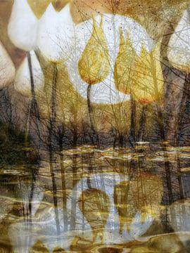 Tulpenwasser van Christine Nöhmeier