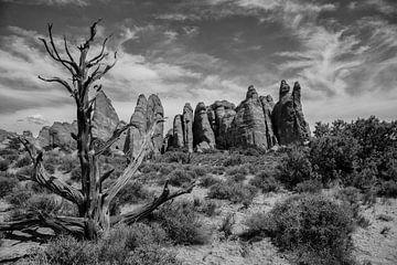 Arches_National_Park amerika van Jan Pel